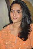 Anushka at Singham 2 Pressmeet-thumbnail-7
