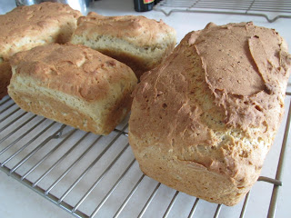 Gluten Free Hempseed and Chia Bread
