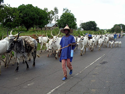 FG begs herdsmen to embrace ranches 1