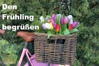 https://diezitronenfalterin.de/2019/02/28/monatsmotto-maerz-den-fruehling-begruessen/