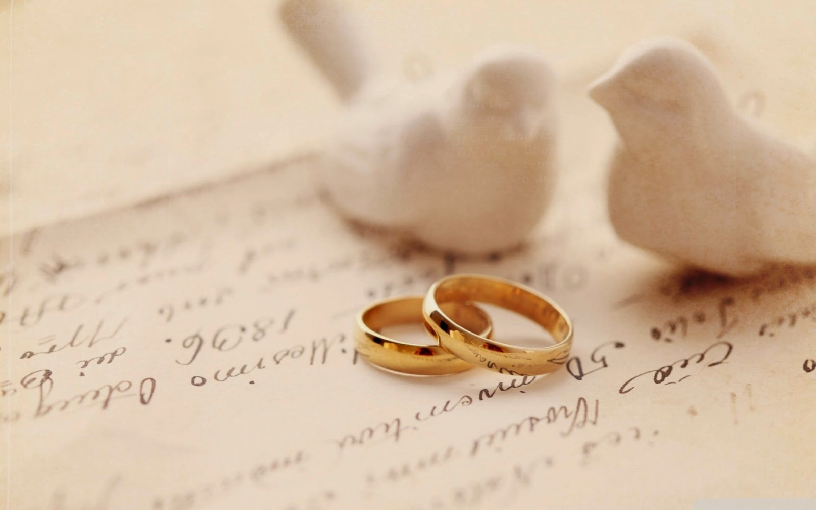 hd-wallpapers-gold-ring-wedding-dove