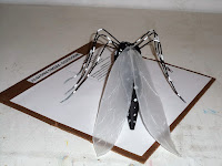 Mosquito del Dengue (maqueta)
