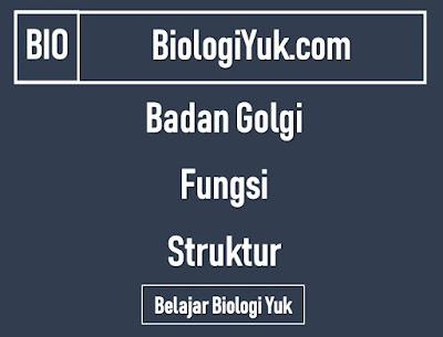 Badan Golgi: Fungsi dan Struktur Lengkap