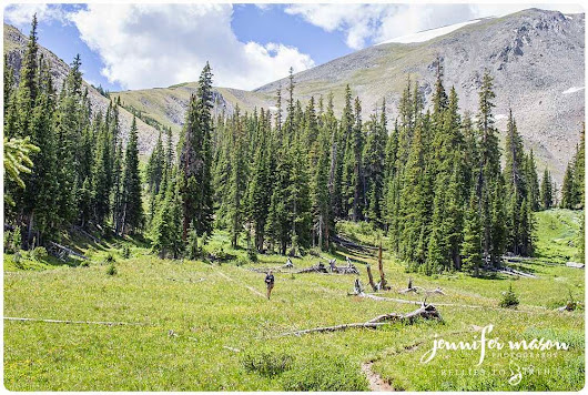 Miners Creek trail to Peak 6, Frisco and Breckenridge Colorado, Tenmile Range