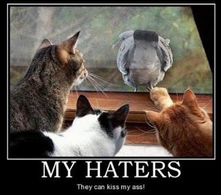 Gambar Gambar Lucu Motivasi Bahasa Inggris Haters Gonna Be Haters