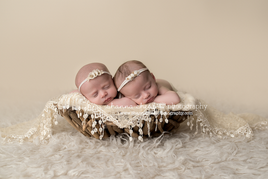 eugene oregon newborn photographer twins