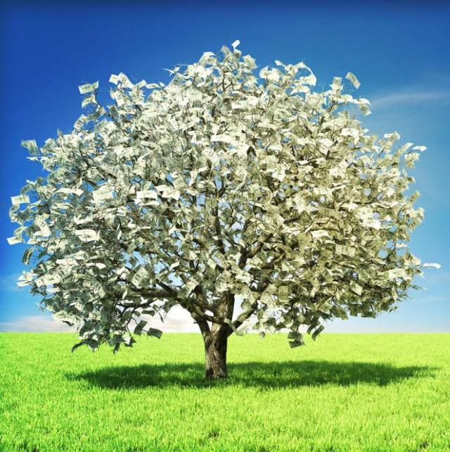 The real story of The Magic Money Tree | Cambria Publishing