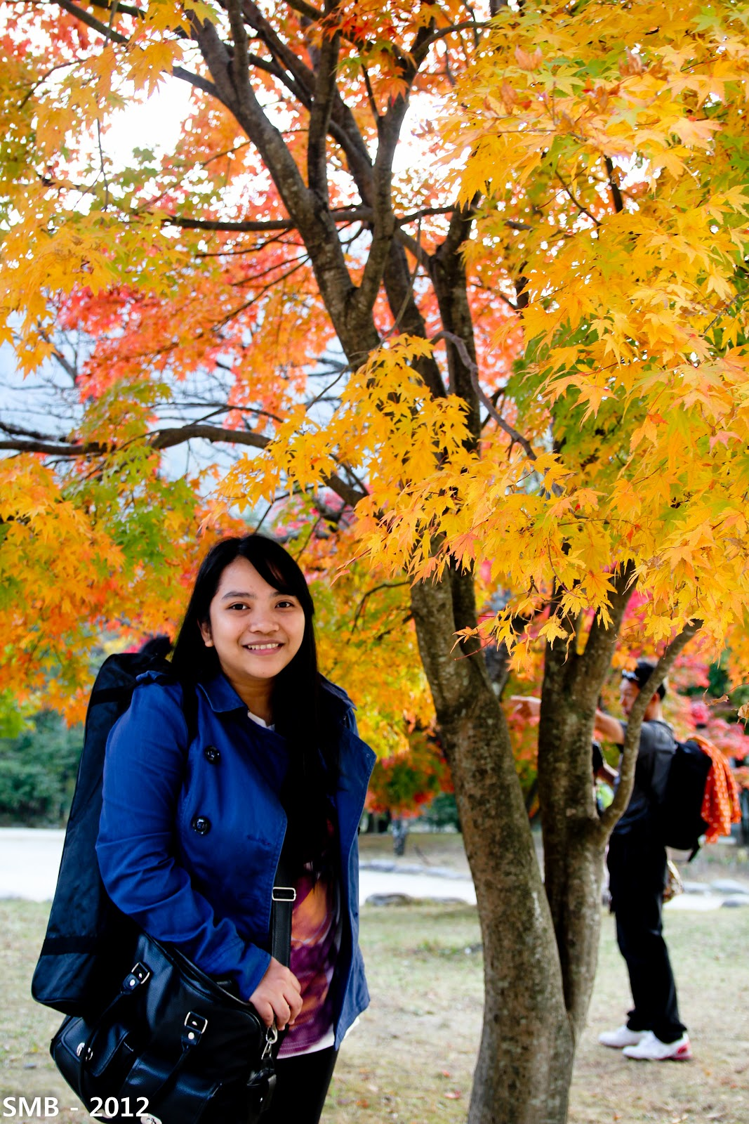 autumn korea blog