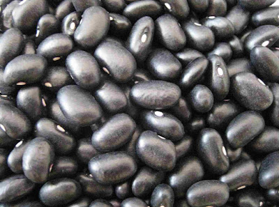 black-beans-how-to-start-a-high-fiber-diet