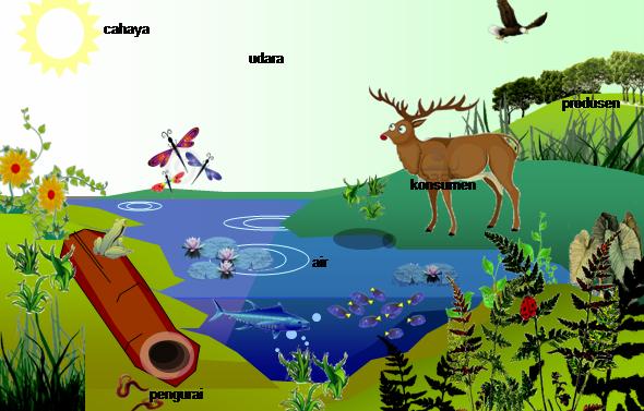Ruang lingkup ekologi ilmu ekologi merupakan bagian dari ilmu hayati atau ilmu biologi. Laporan Praktikum Biologi Dasar Mengenai Populasi