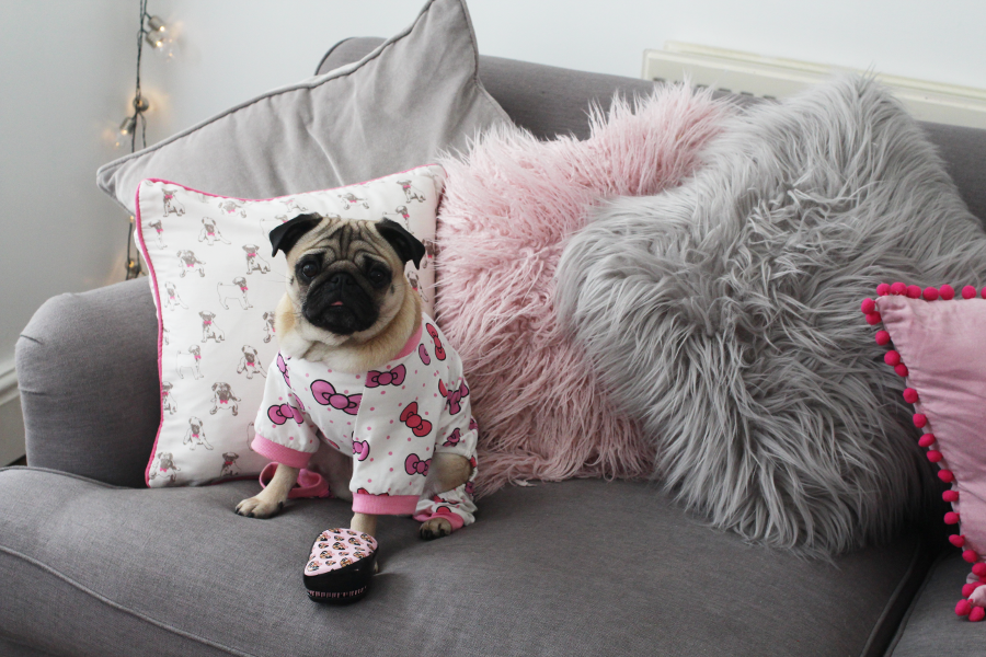 Tangle Teezer Pug Love, Tilly Lulu Pugs,