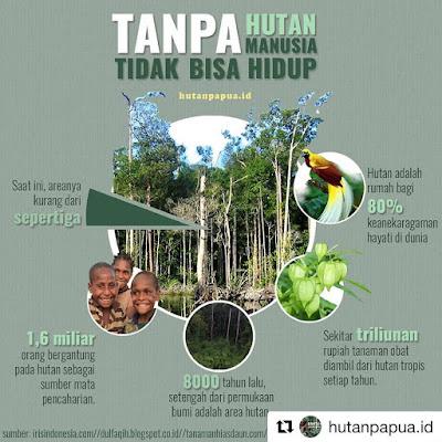 Fungsi Hutan Sangat Vital, Tanpa Hutan Kita Tidak Bisa Hidup (hutanpapua.id)