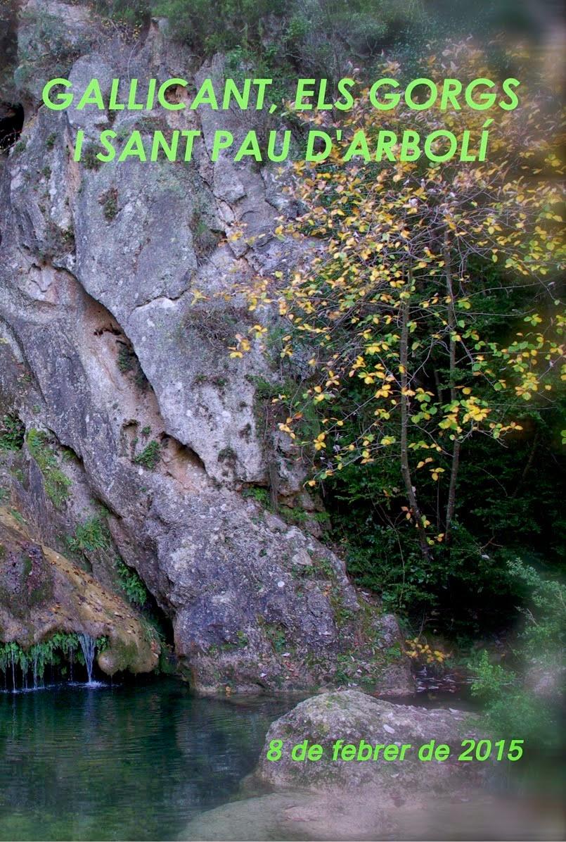 Arbolí - Gallicant - els Gorgs
