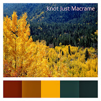 Fall color palette aspens and evergreen trees