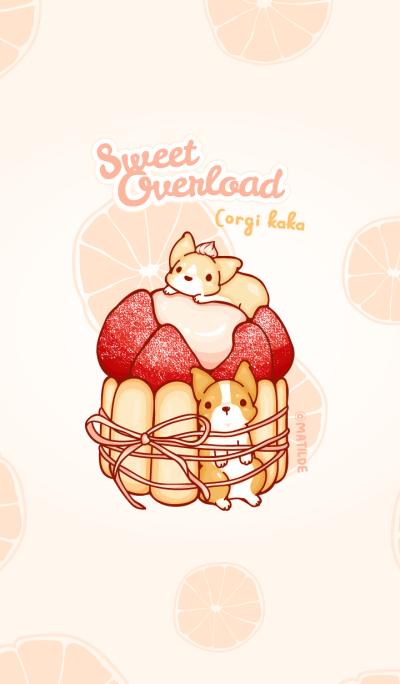 Corgi Dog Kaka - Sweet Overload