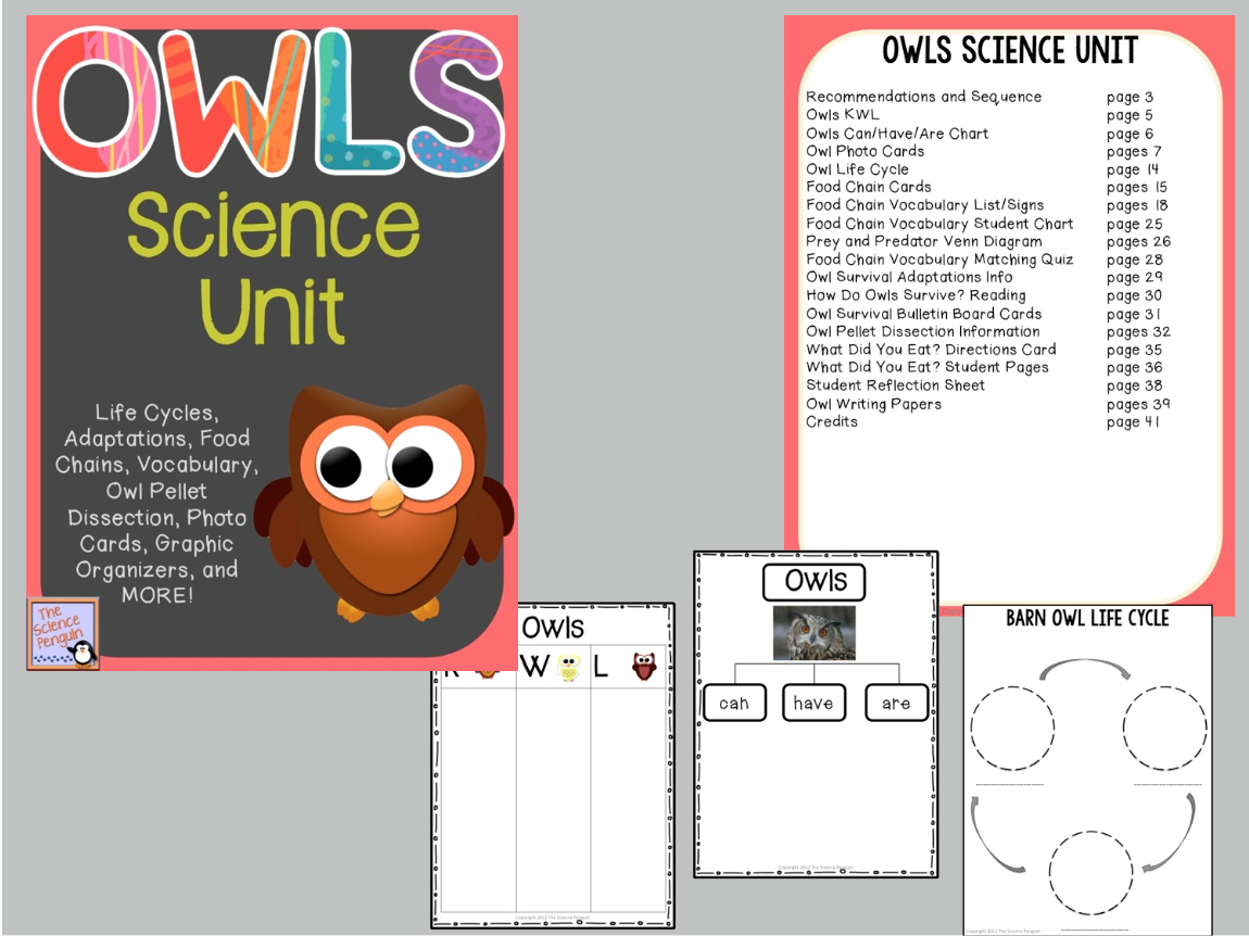 Owls Science Unit Yeah
