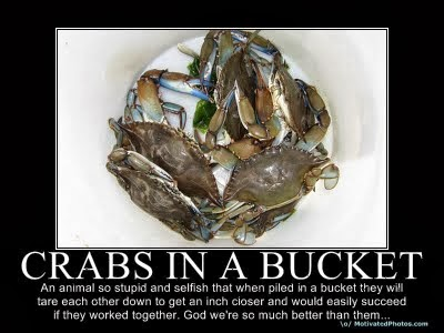 Seed Of Thoughts Crab Bucket