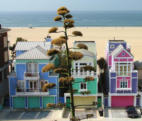 Beach Houses Santa Monica