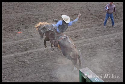 Nyssa Nite Rodeo Part III: The Art of the Rodeo