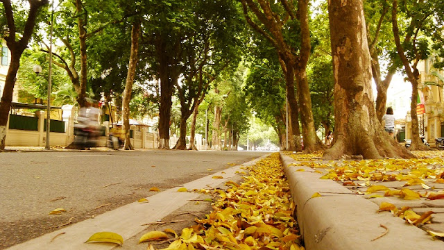10 specialties of Autumn in Hanoi capital 7