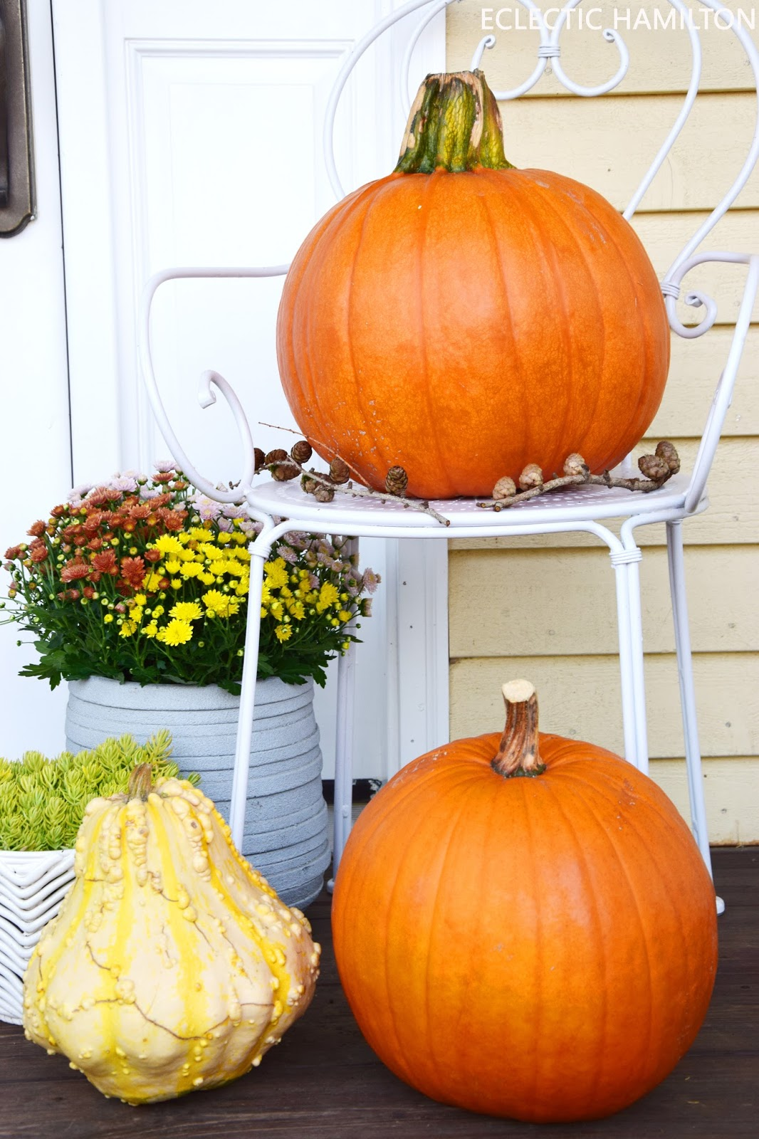 Herbstdeko mit Kürbis und natürlichen Materialien aus dem Wald: Moos, Tannenzapfen. Deko, Dekoration, Kürbis, Mais