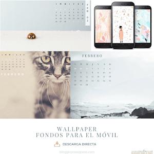 Fondo de escritorio Calendario Febrero 2018 y fondos móvil bonitos ✅  DESCARGA