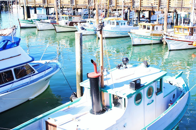 Boats, San Francisco - California travel blog