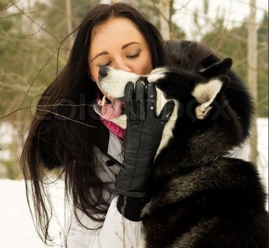 White Wolf Women Who Run With The Siberian Huskies