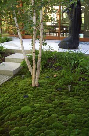 Tuindesign 20 Tips en tuinideen voor een kleine tuin met