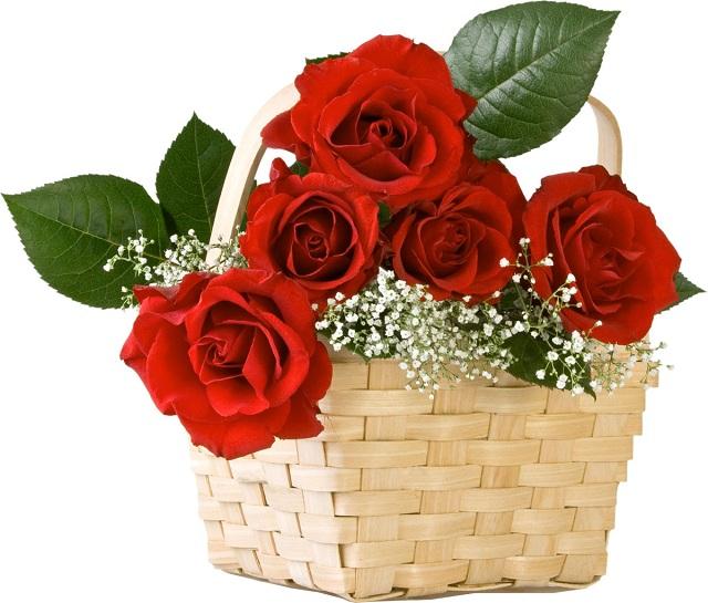 Bó hoa hồng đỏ đẹp nhất thế giới 10
