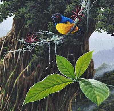 cuadros-paisajes-de-bosques-con-aves-colombianos