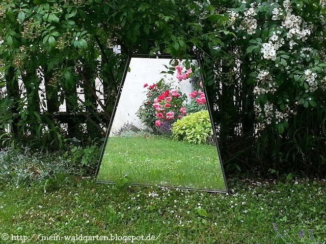 Spiegel Im Garten mein waldgarten spiegel und strauch paeonie
