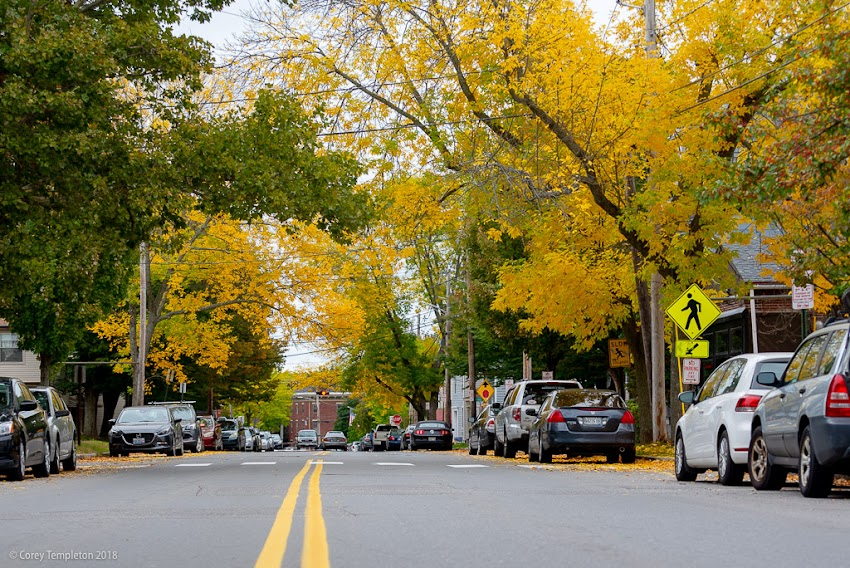 Portland, Maine USA October 2018 photo by Corey Templeton. From green to yellow on Danforth Street.