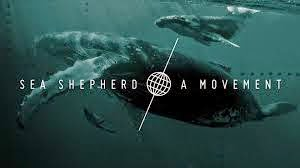 SEA SHEPHERD MOVEMENT