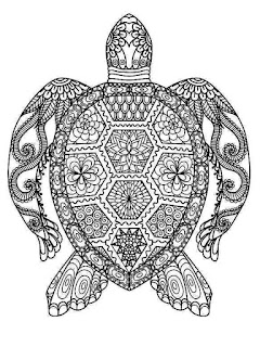 Mandala de tortuga