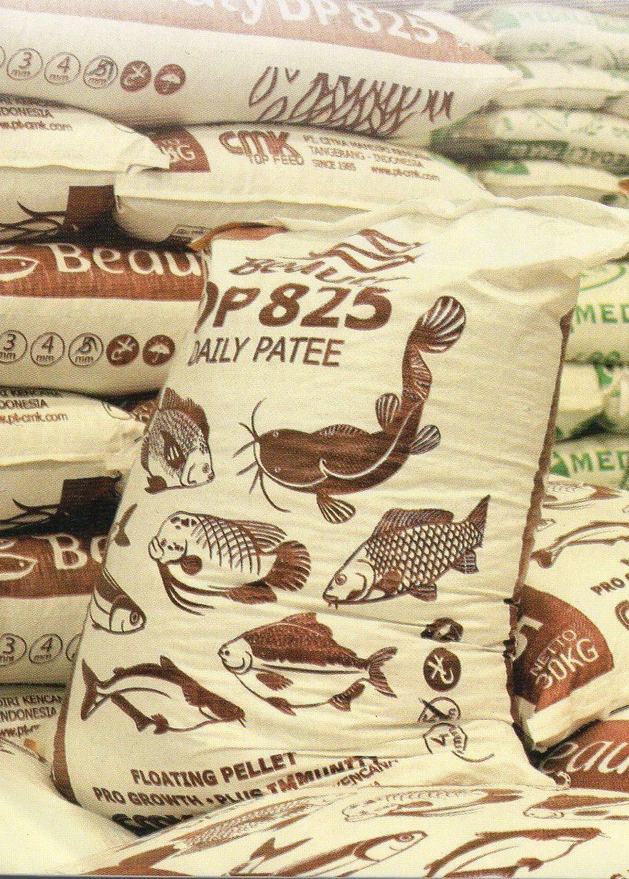 Pemilihan Pakan Yang Baik Untuk Ikan Patin Poultryshop Indonesia