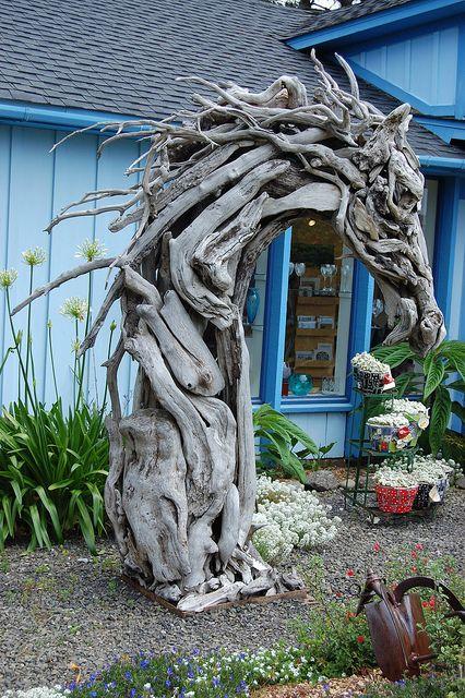 garden therapy my garden ideas. Black Bedroom Furniture Sets. Home Design Ideas