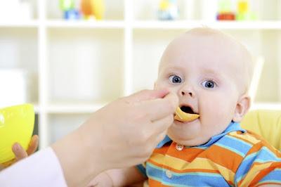 Menu Foods Baby 13 Months