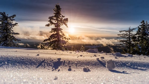 Perfect Winter View