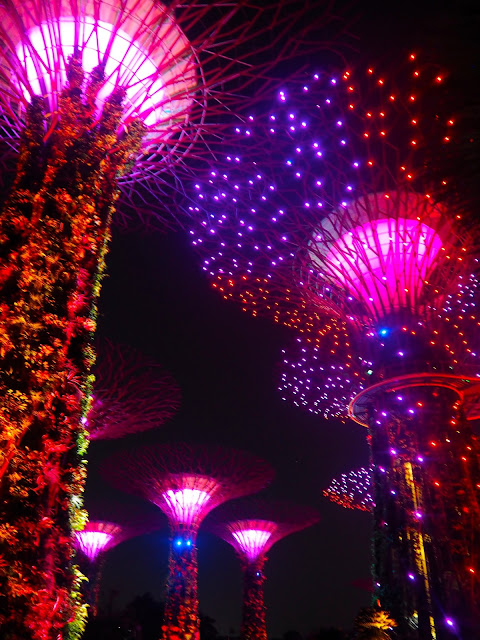Supertree Grove light show, Gardens by the Bay, Singapore