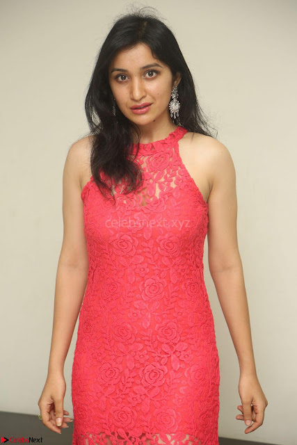 Sakshi Kakkar in Red Legsplit Sleeveless Gown at Dare movie Press meet ~  Exclusive 010.JPG
