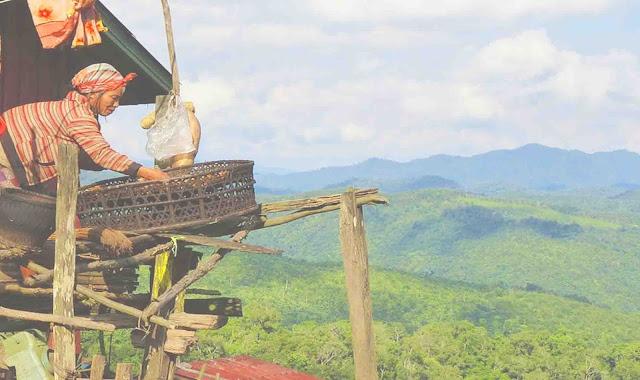 Aktivitas Masyarakat di Daerah Dataran Tinggi atau Pegunungan
