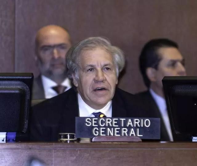 """Almagro """"saluda la asunción"""" de Guaidó como """"Presidente interino"""""""
