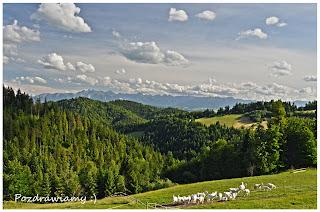 Czy Polak Potrafi się podzielić ? Zapraszamy do projektu ,, Budowa Naturalnego Stawu Kąpielowego ,, w Gorcach wysoko w górach na ponad 929 m n.p.m. z pięknym widokiem na Tatry i Gorce Agroturystyka Górna Chata – miejsce z klimatem zaprasza