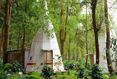 Spot Apache Camp Coban Talun