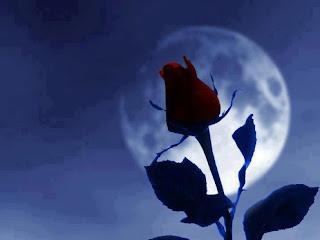 Hồng Thủy Tiên- những câu thơ viết từ nắng gió cao nguyên (1)