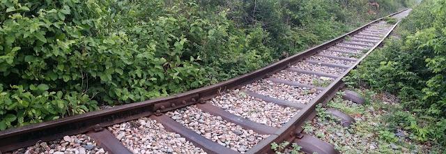 Antiguas vías del tren en la región de Battambang