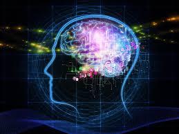 human brain, how many gb human brain