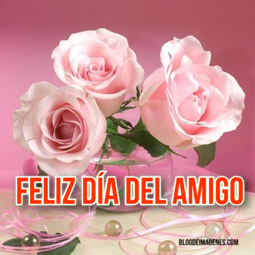 Imágenes de flores para el día del amor y la amistad
