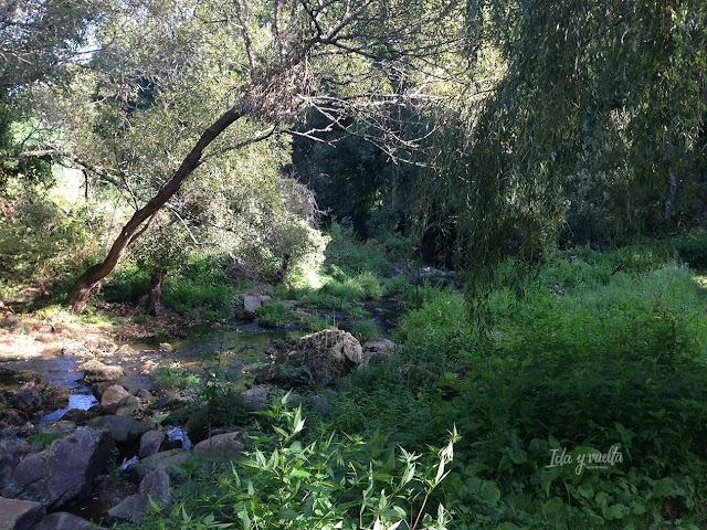 A Quinta da Auga, jardín